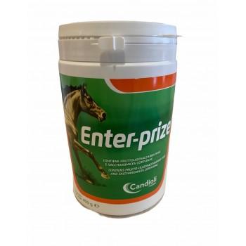 Enter-prize